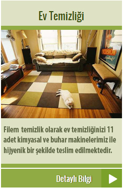 edirne-ev-temizli