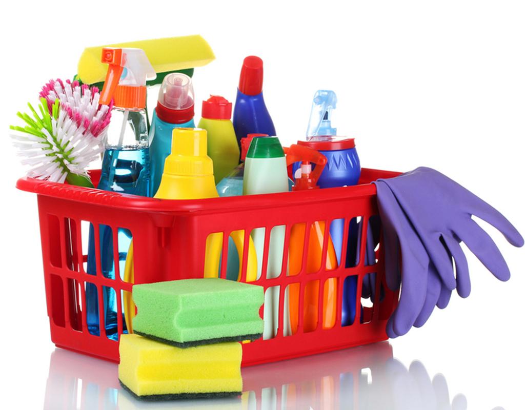 temizlik-uruleri